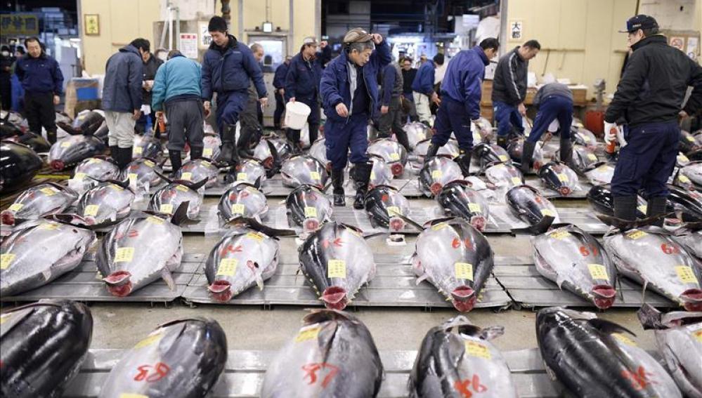 Lonja de Tsukiji
