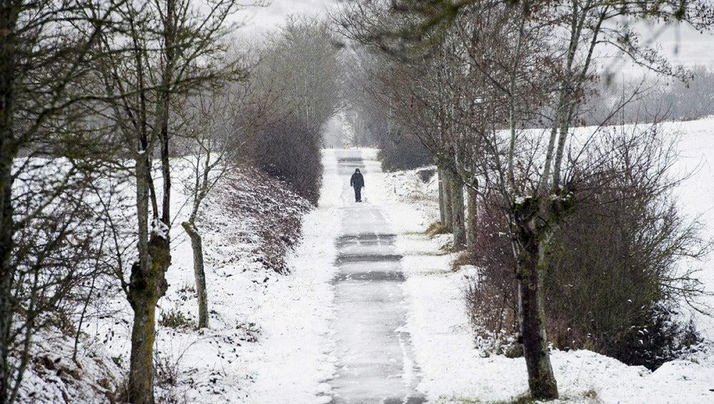 Vitoria, nevada