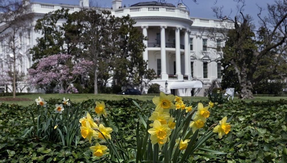 Cae un dron de origen desconocido en los jardines de la Casa Blanca