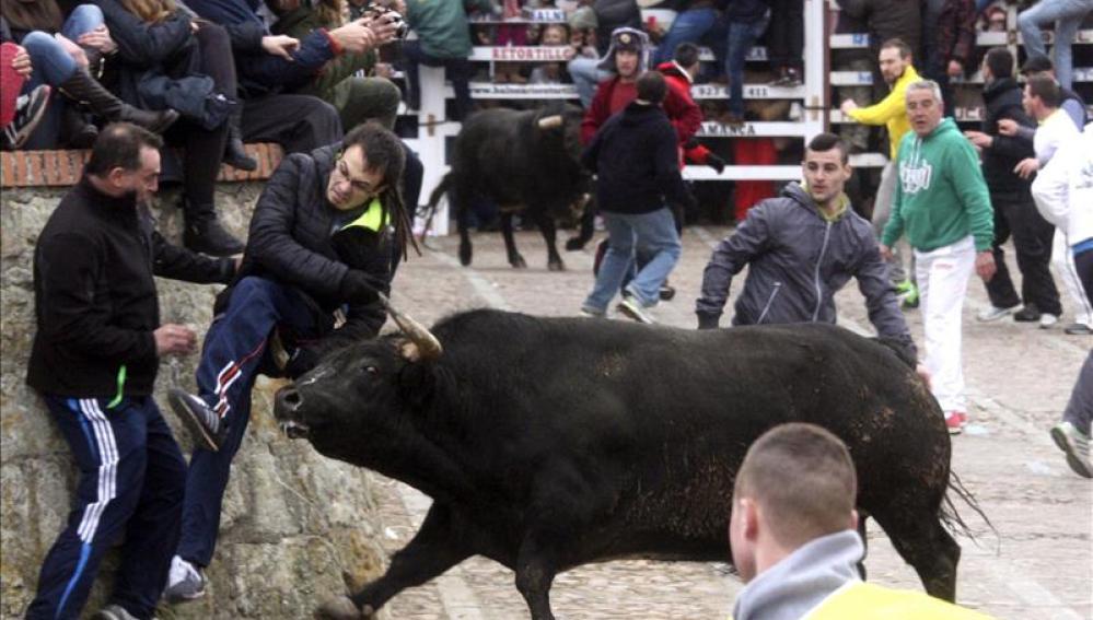 Tres heridos en las Fiestas del Carnaval del Toro en Ciudad Rodrigo