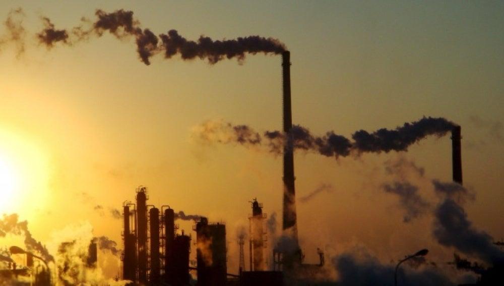 WWF presenta nuevo informe con medidas contra cambio climático