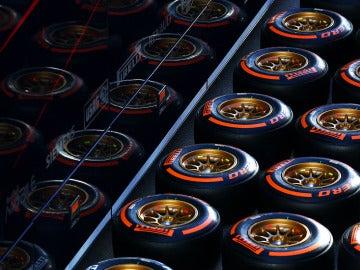 Neumáticos de Pirelli, en el circuito de Jerez