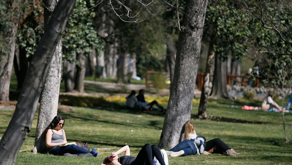 Varias personas en un parque de Madrid