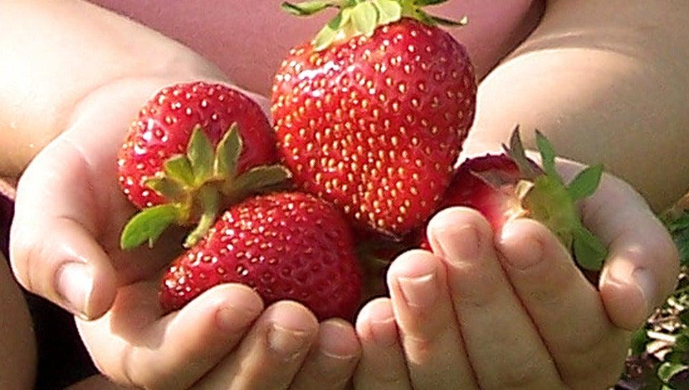 La fruta después de comer igual no es tan buena... os contamos el motivo.