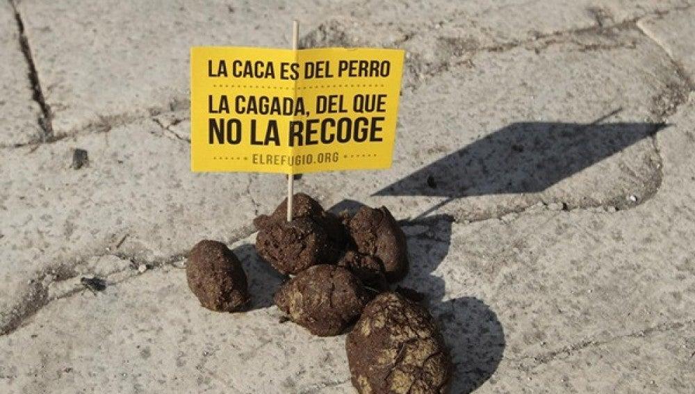 Eslogan de la campaña #pasodecacas