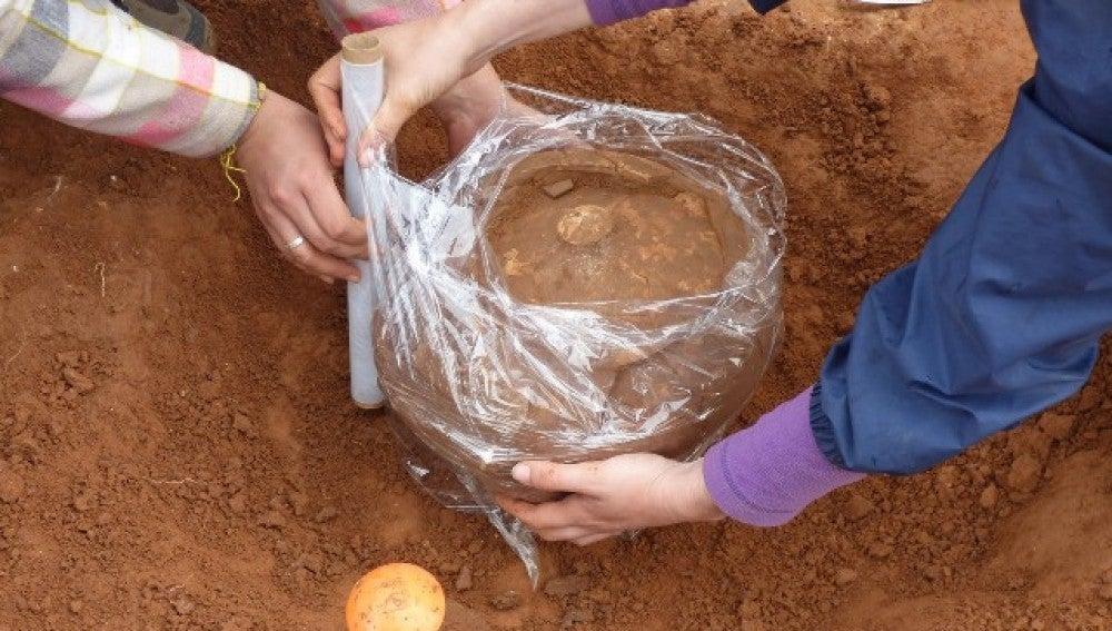 Recuperan urnas de incineración intactas en una necrópolis ibérica de Ulldecona