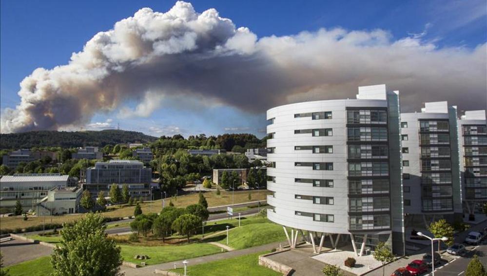 El incendio pudo haber afectado a varias viviendas cercanas a la zona
