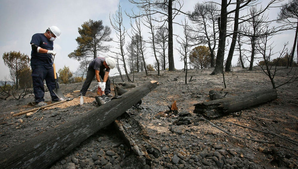 Bomberos trabajan sobre la zona del incendio de Ódena