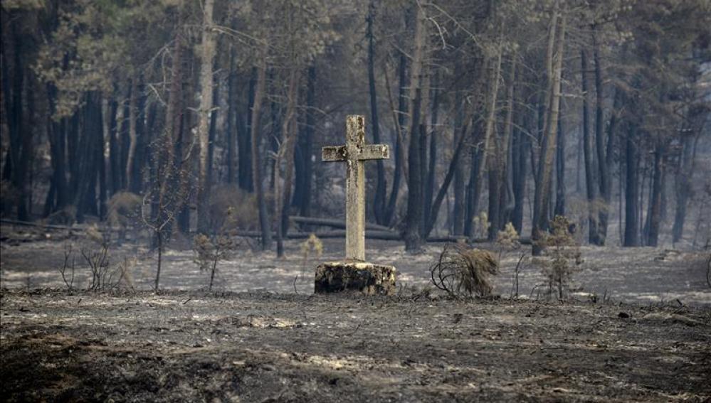 Restos del incendio de Cualedro
