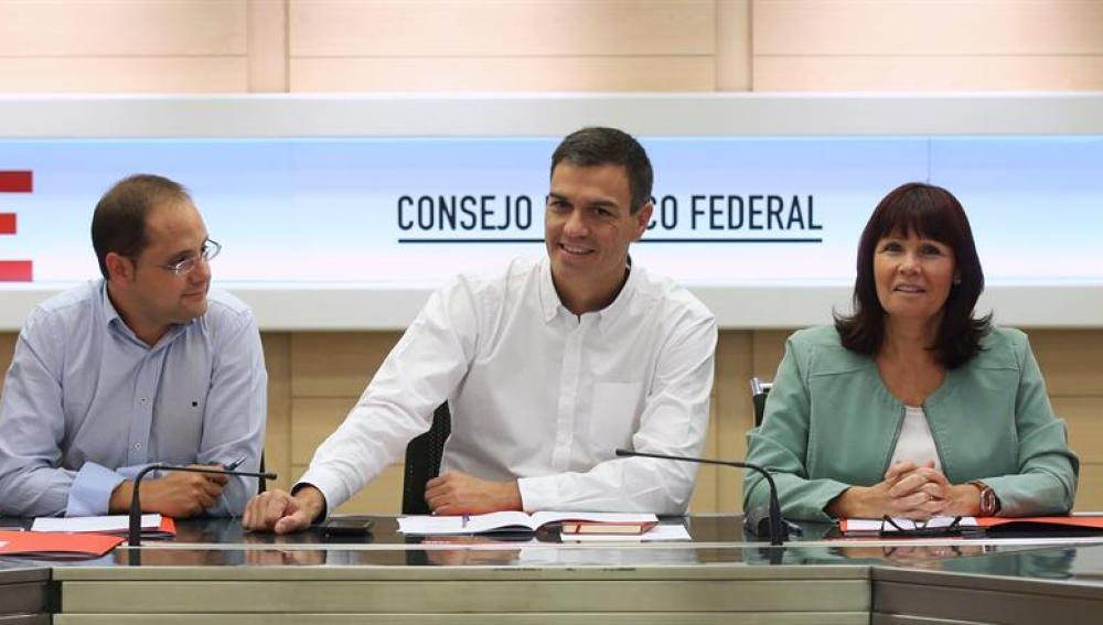 El secretario general del PSOE, Pedro Sánchez (c), durante la reunión del Comité Federal