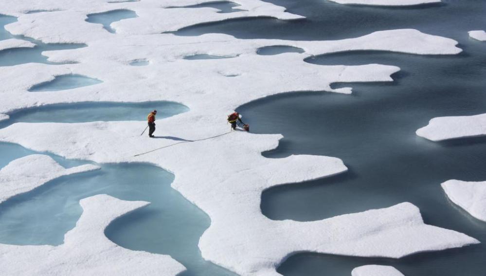 El Ártico, invadido por mosquitos a causa del calentamiento global