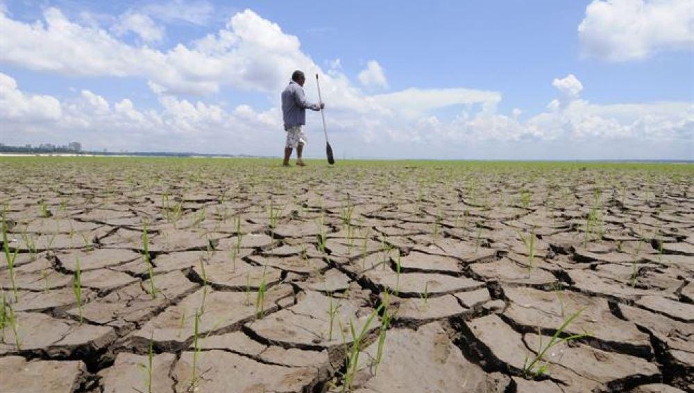 Las consecuencias extremas del cambio climático, en fotos