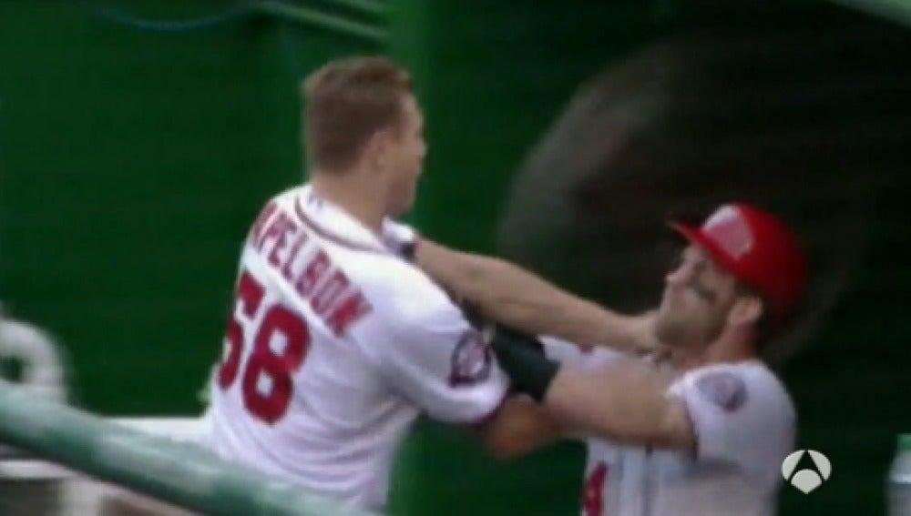Dos compañeros de equipo se pelean en el banquillo