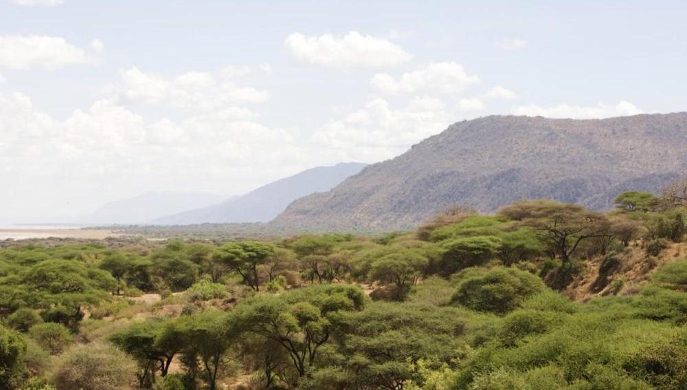 Los 10 ecosistemas en peligro crítico de extinción