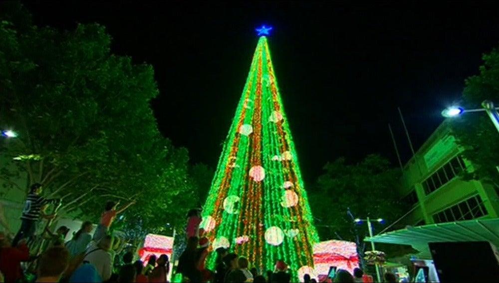 Camberra bate, con 518.838, el récord Guinness de luces en un árbol de Navidad