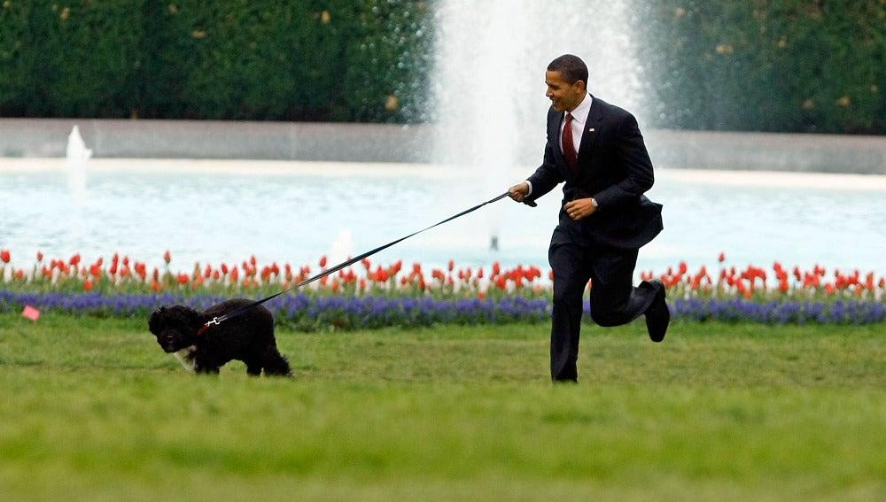Back Obama con su perro Bo