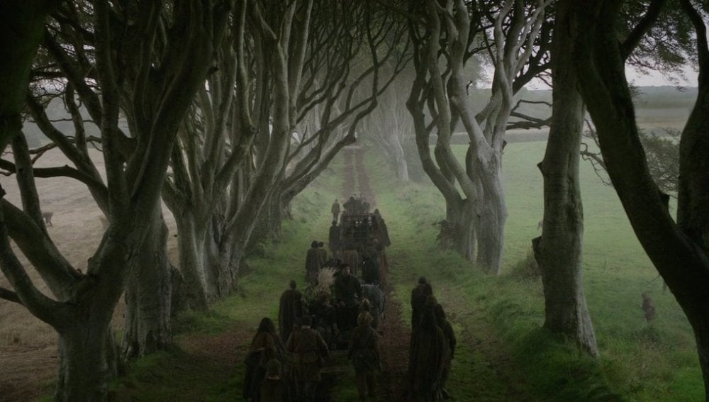 'The Dark Hedges'