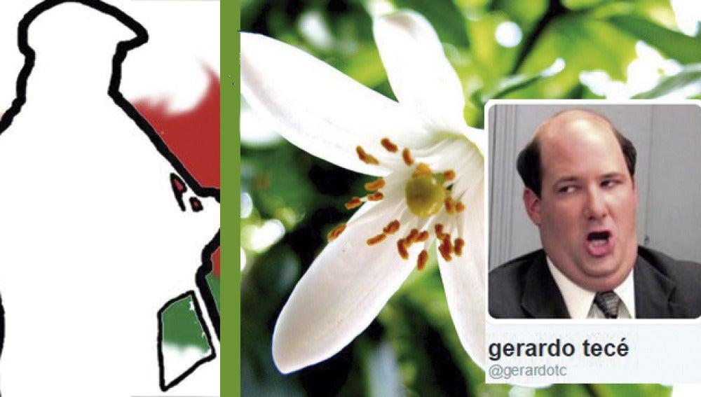 """Aurresku y azahar"" por @gerardotc"