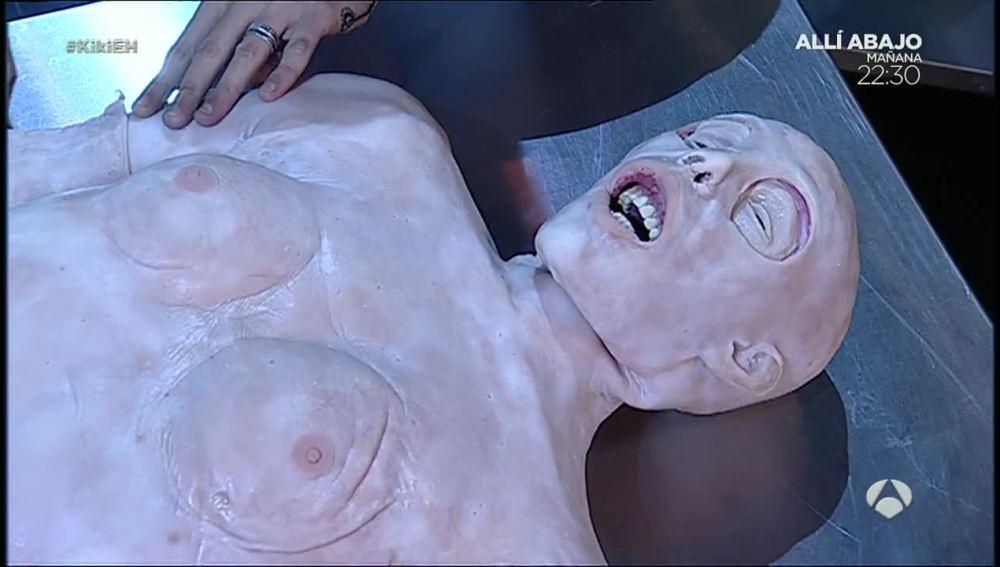 ¿Cómo es el cuerpo humano por dentro?