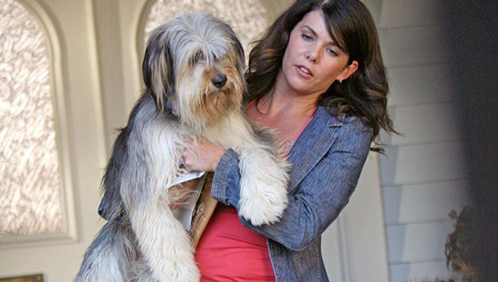 Paul Anka, el perro de 'Las Chicas Gilmore', junto a Lauren Graham
