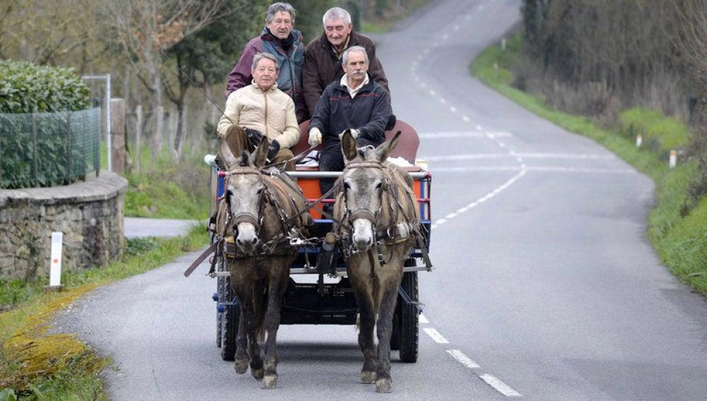 Los cuatro jubilados en el carro de mulas