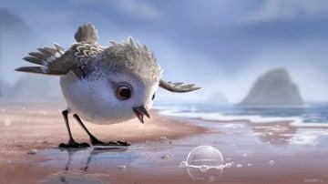 'Piper', el nuevo corto de Pixar