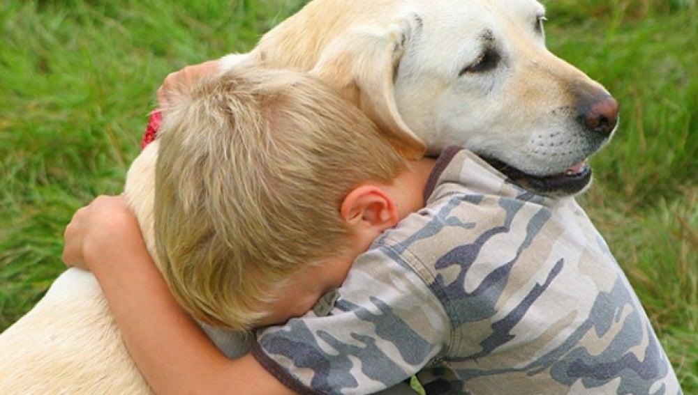 Resultado de imagen para amar a tu mascota