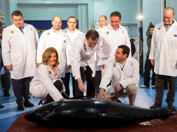 Mariano Rajoy durante la visita a una empresa multinacional en Málaga