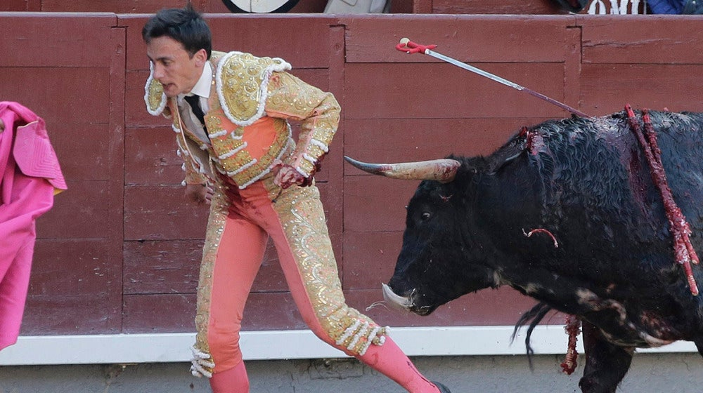 El novillero Filiberto Martínez sufrió un grave percance al seccionarse los tendones
