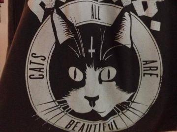 Bolso de gatitos