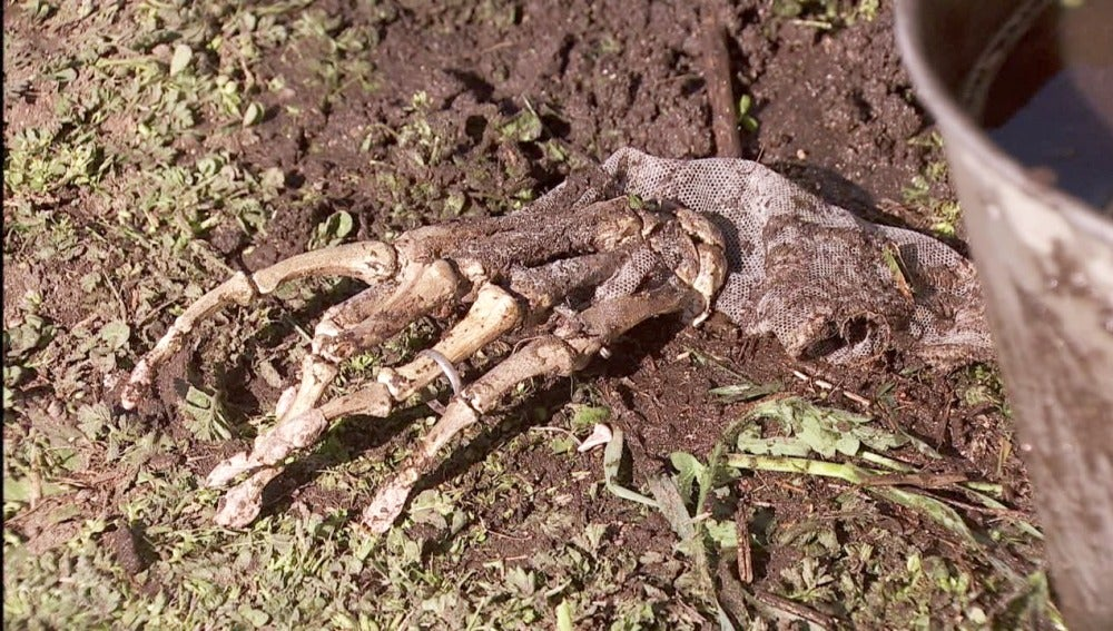 Elías descubre restos humanos en la antigua casa de Hernando