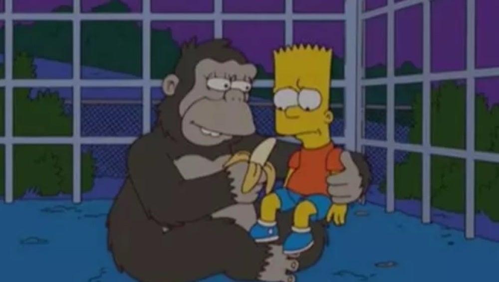 Una gorila se encariña con Bart