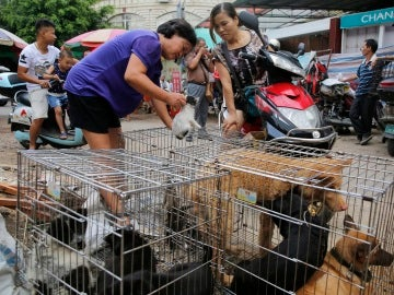 Mercado Dashichang en Yulin