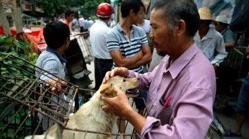 Mercado Dashichang en Yulin