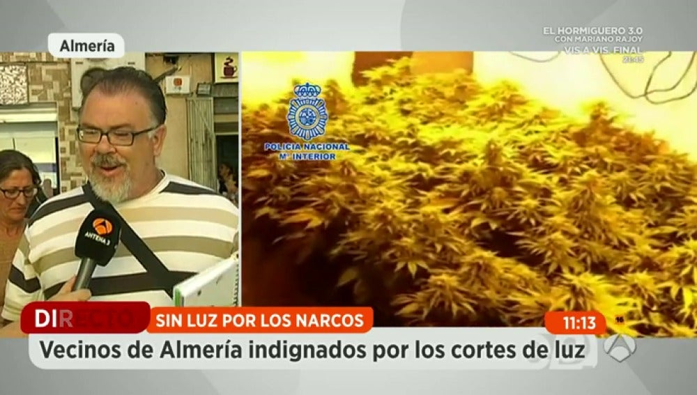 Frame 128.558479 de: Cortes de luz en un barrio de Almería por las plantaciones ilegales de marihuana
