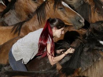 'A Rapa das Bestas' en Pontevedra
