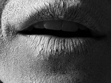 Imagen de la boca