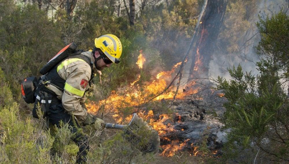 Un incendio en Blanes obliga a desalojar a 310 personas, que ya pueden regresar a sus casas