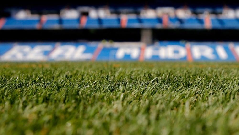 El Berbabéu estrenará césped esta temporada