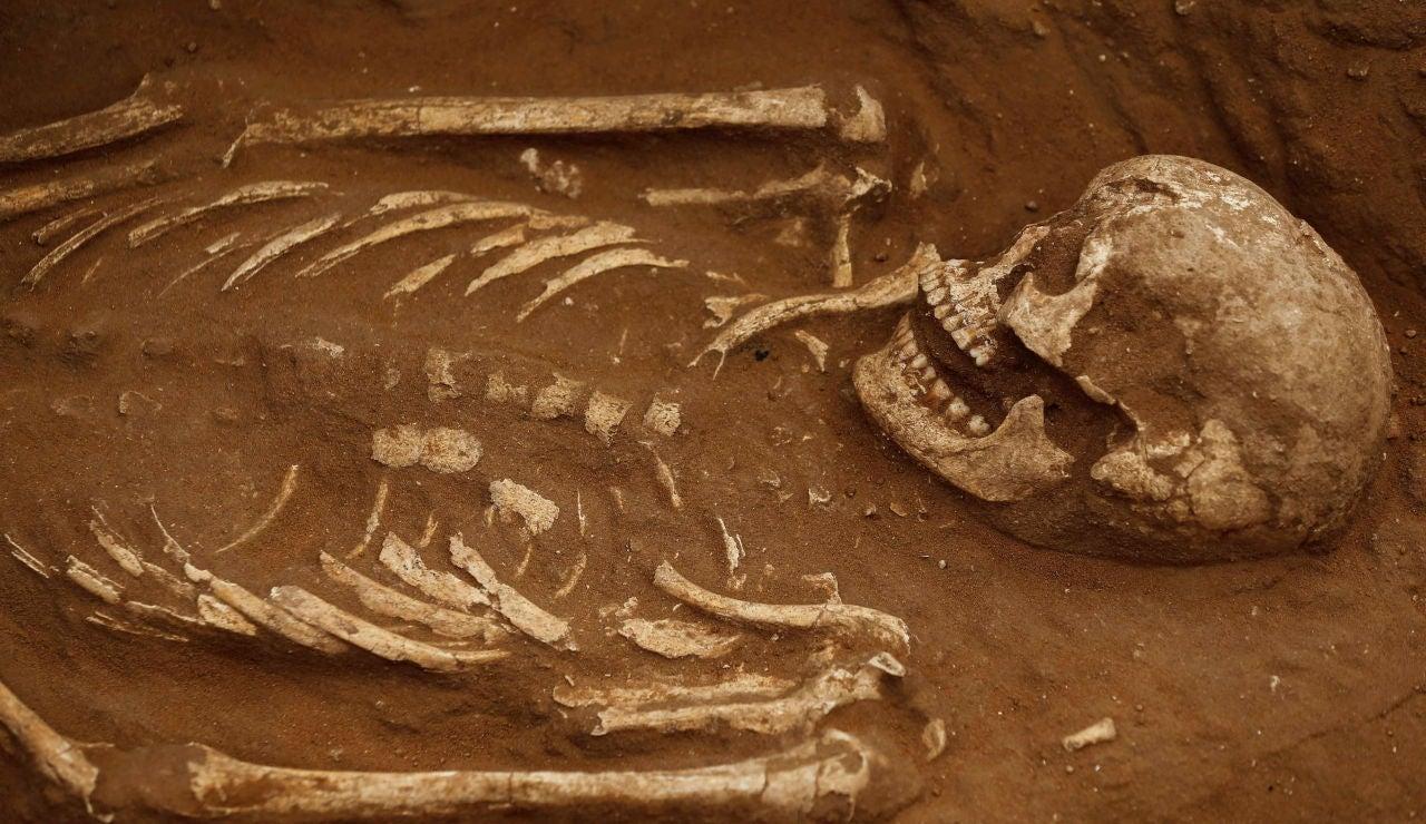 Imagen de archivo de un esqueleto humano