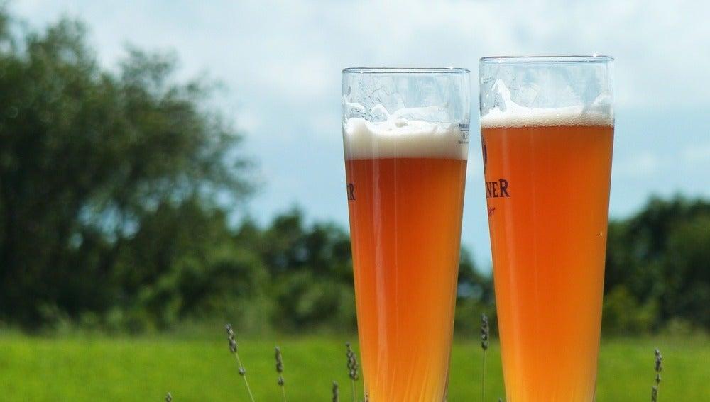 10 curiosidades sobre la cerveza que quizá no conocías