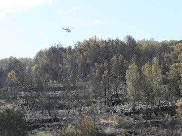 Zona quemada del incendio en Pobla Montornés