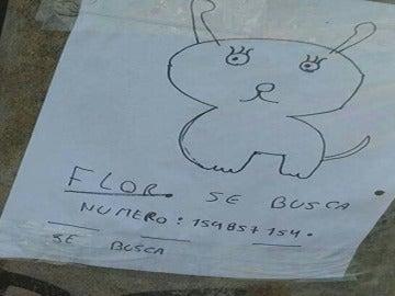 El dibujo de la mascota perdida que hicieron los dos pequeños propietarios