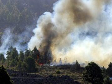 Incendio forestal en La Palma