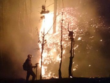 Labores de extinción del incendio de la Palma durante la noche