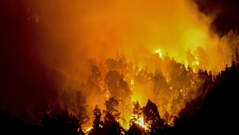 La Palma en llamas (07-08-2016)