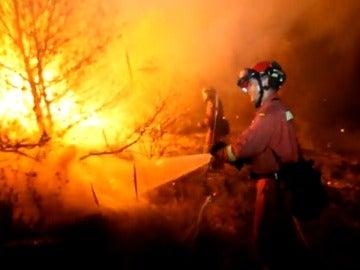 Frame 8.23235 de: Las negligencias originan el 80% de los incendios forestales
