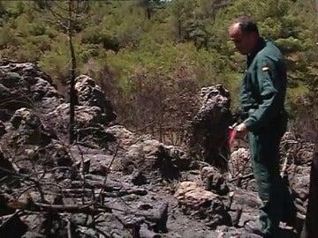 Frame 34.678853 de: Las negligencias originan el 80% de los incendios forestales