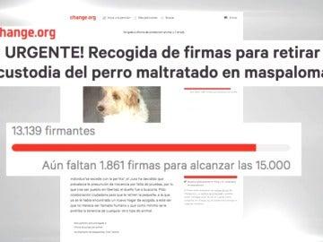 Frame 16.09868 de: El presunto responsable del incendio de La Palma fue denunciado hace seis meses tras morder a un perro
