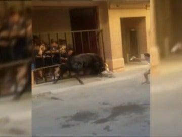 Frame 5.677998 de: Un hombre de 60 años es corneado en Turís, Valencia